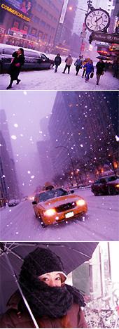 大雪降ってフラフラです_b0007805_15451475.jpg