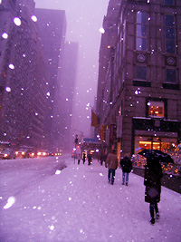 大雪降ってフラフラです_b0007805_15453310.jpg