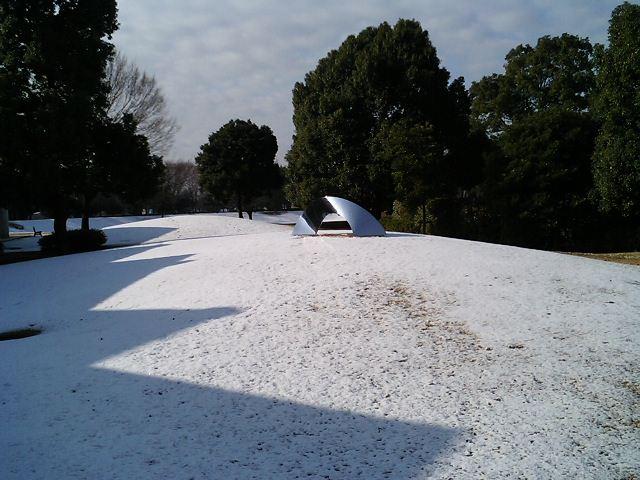薄雪の学内風景_a0026507_935045.jpg