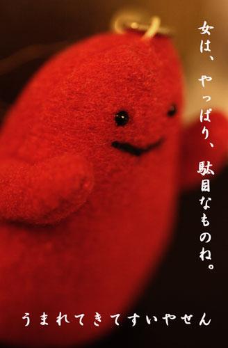 b0046465_10385998.jpg
