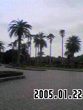 b0066582_11261.png