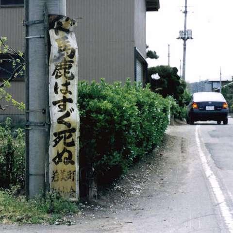 b0034968_1055278.jpg