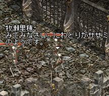c0043279_21503286.jpg