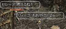 b0032347_8212592.jpg