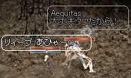 b0032347_1155988.jpg