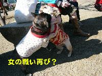 b0026701_194521100.jpg