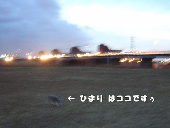 b0002821_22402874.jpg