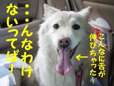 c0021898_014019.jpg