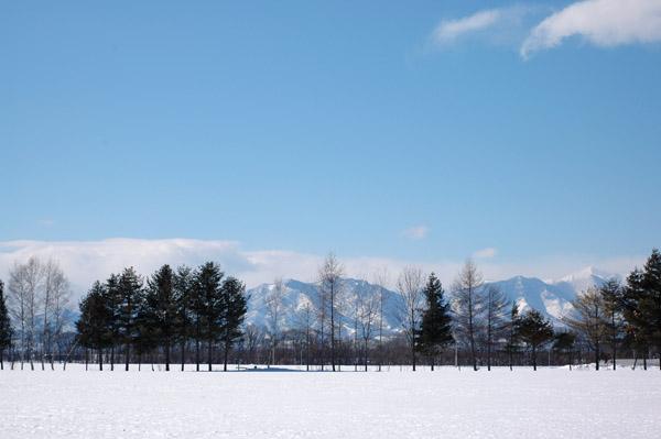 今日の北海道_a0016152_1819514.jpg