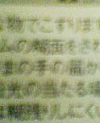 b0038886_23221990.jpg