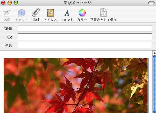 b0059420_2216197.jpg