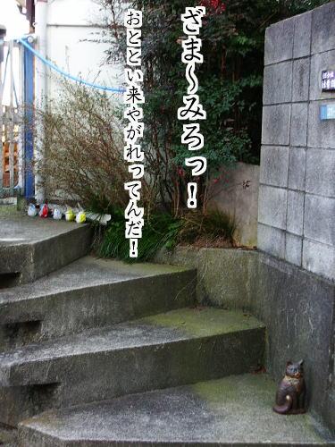 b0041894_1417721.jpg