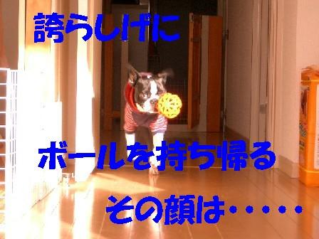 b0056096_1847460.jpg