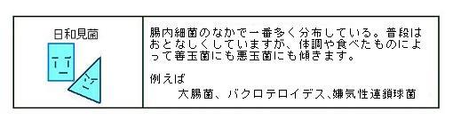 c0051637_146276.jpg