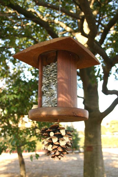 鳥たちのお食事をのぞいてみよう_b0049307_21213124.jpg