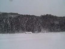 豪雪地帯に行く_b0054391_9192051.jpg