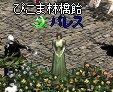 c0048437_1259196.jpg