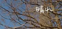 b0065666_20143329.jpg