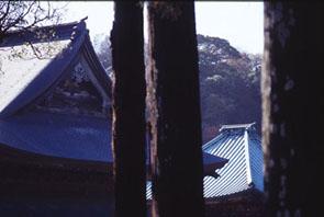 3・12団塊サミット2005in岐阜・プレ企画_c0014967_1634792.jpg