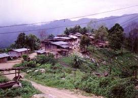 メオの村で_c0030645_15404515.jpg
