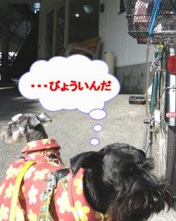 b0069978_15505892.jpg