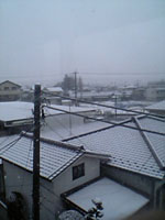 突然の大雪_c0006432_11432629.jpg