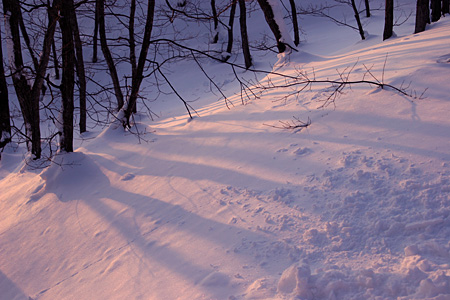 雪山の夕暮れ時は・・・_c0048494_16505795.jpg