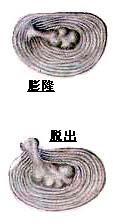 b0052170_18591942.jpg