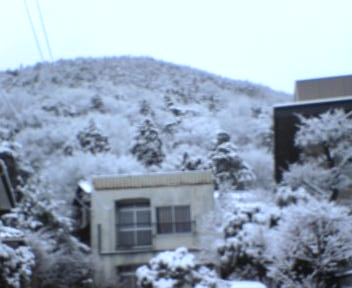 また・・雪だから・・_c0057415_752988.jpg
