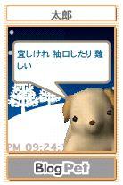 a0029444_21562674.jpg