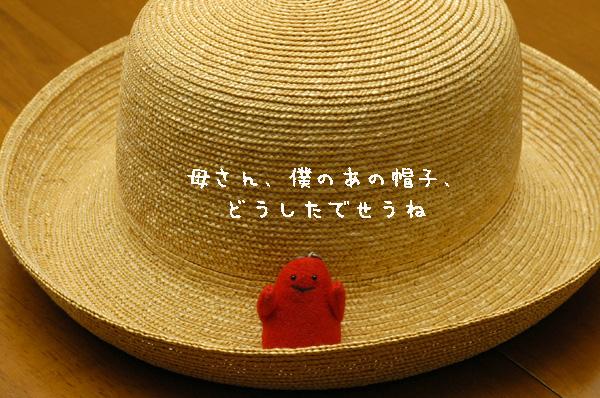 b0046465_2025775.jpg