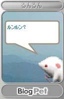 a0020763_1531504.jpg