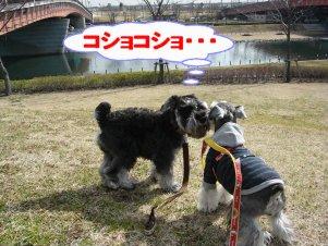 b0069978_1515266.jpg