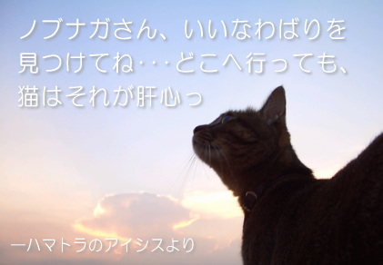 a0013479_134851.jpg