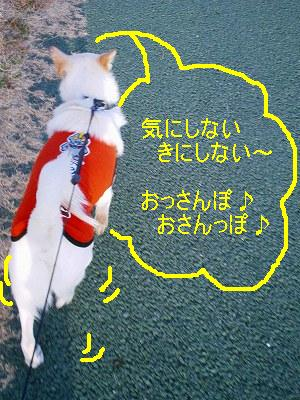 b0006329_19163087.jpg
