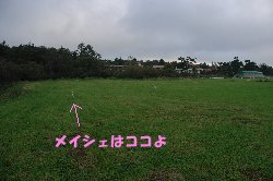 c0065512_20251658.jpg