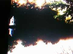 「火垂るの墓」の世界_b0054727_1425669.jpg