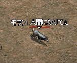 b0013955_114414.jpg
