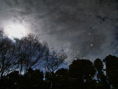 冬銀河。_b0022268_0474885.jpg