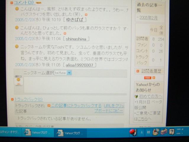 c0058091_10373278.jpg