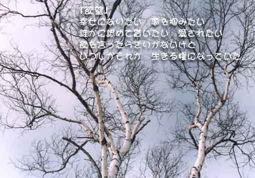 b0044724_16302727.jpg