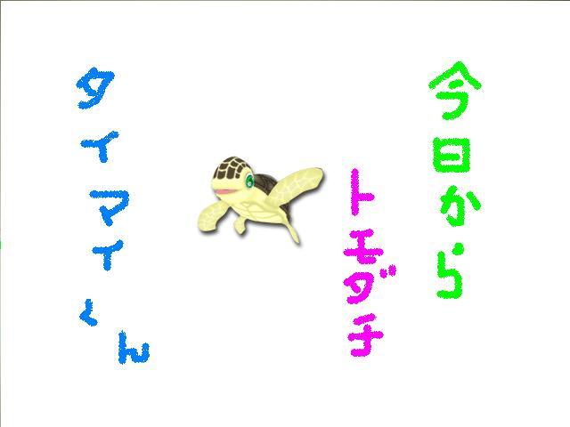 b0006479_1458878.jpg
