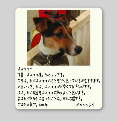 b0002585_18163456.jpg