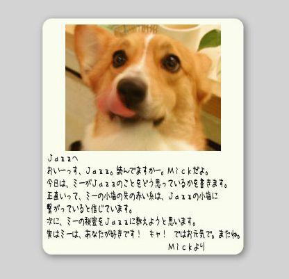 b0002585_1818941.jpg