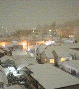 雪が。_b0020723_0561820.jpg