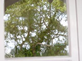 086 窓の仕業_c0001773_1503518.jpg