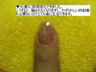 b0059410_23305041.jpg
