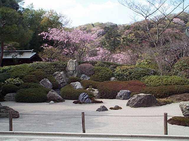 鎌倉・カイドウの花_c0059854_22311374.jpg