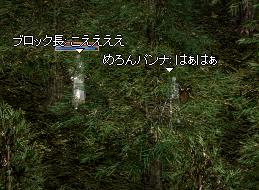 c0035735_1305396.jpg