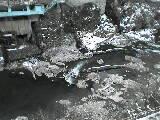 b0036439_14224532.jpg